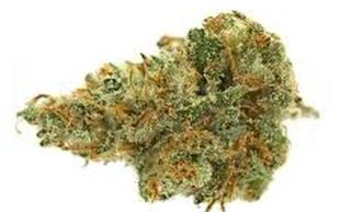 kushfly coupon code	 kushfly reddit	 Marijuana Cannabis Los Angeles Dispensary Mail Order Marijuana