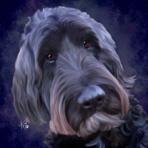 Doodle dog painting commissioned from Colorado.