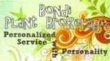 Bondi Plant Brokerage, LLC
