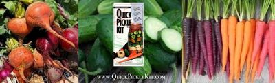 Use fresh vegetables with the Quick Pickle Kit + enjoy your creation in 3 days