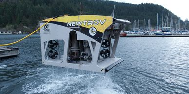 Electric work class ROV