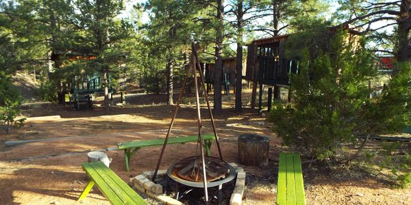 Communal firepit and treehouses.