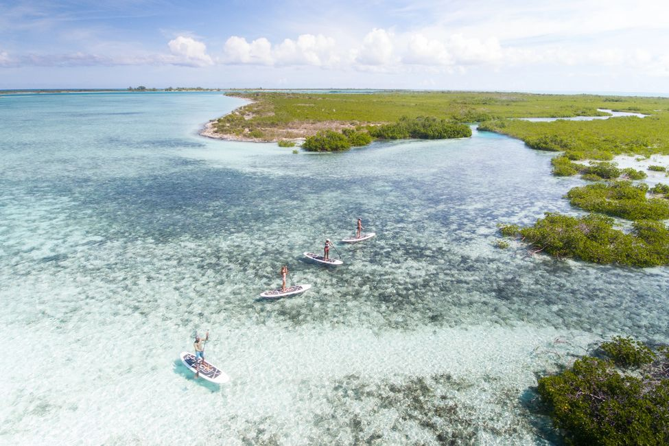 Paddle boarding through around the island of Mangrove Cay!