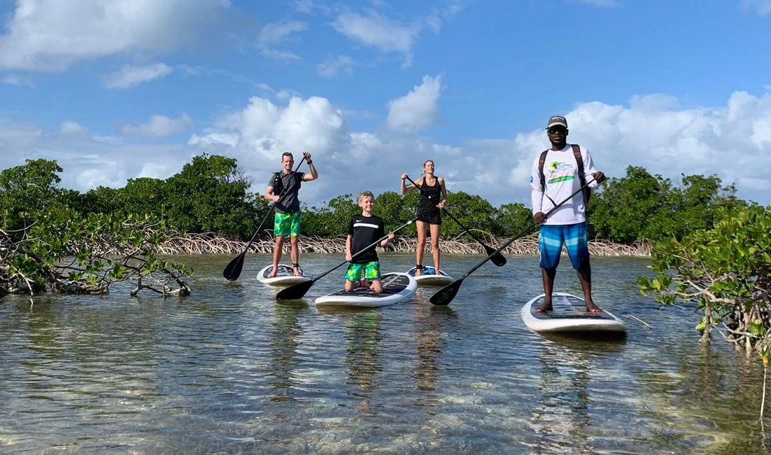 Private paddle boarding or kayaking tours are a must!