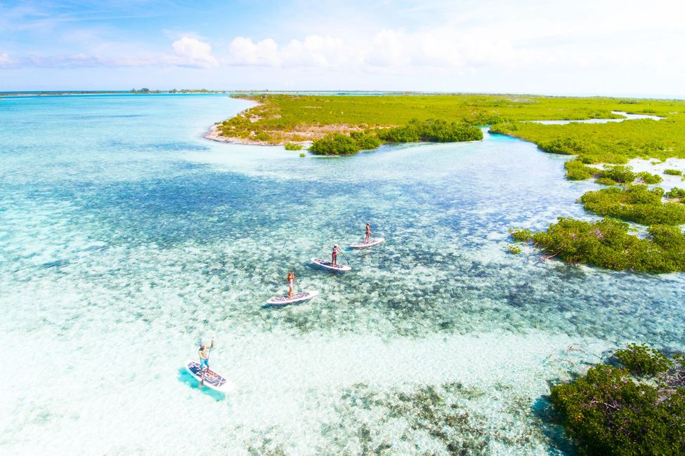 private paddle board tours