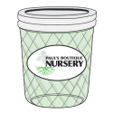 Paul's Boutique Nursery