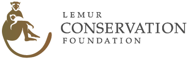 The Lemur Conservation Foundation Gift Shop