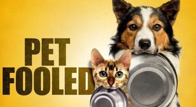Pet Fooled Documentary on Netflix Discover the pet food industry