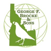 George F. Brocke & Sons, Inc.