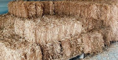 wheat straw, wheat straw bales, bulk wheat straw, hay bales, straw mulch, landscaping mulch