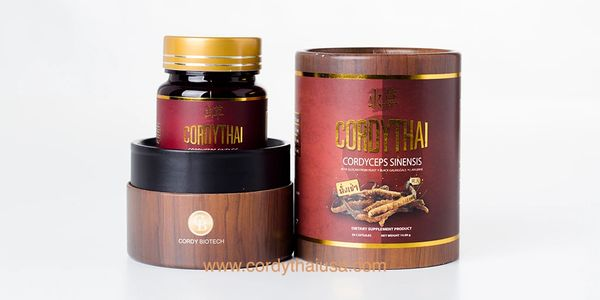 CORDYTHAI ถั่งเช่า ม.เกษตร Cordythai For him Cordyceps with bkack ginger Cordyceps with Krachidam