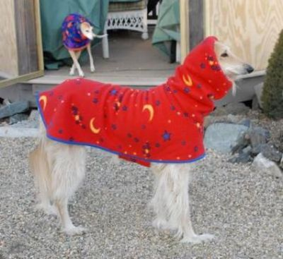An Afghan and her Greyhound sister both wearing co-ordinating Single Layer coats