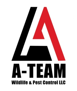 A-Team Wildlife & Pest Control LLC