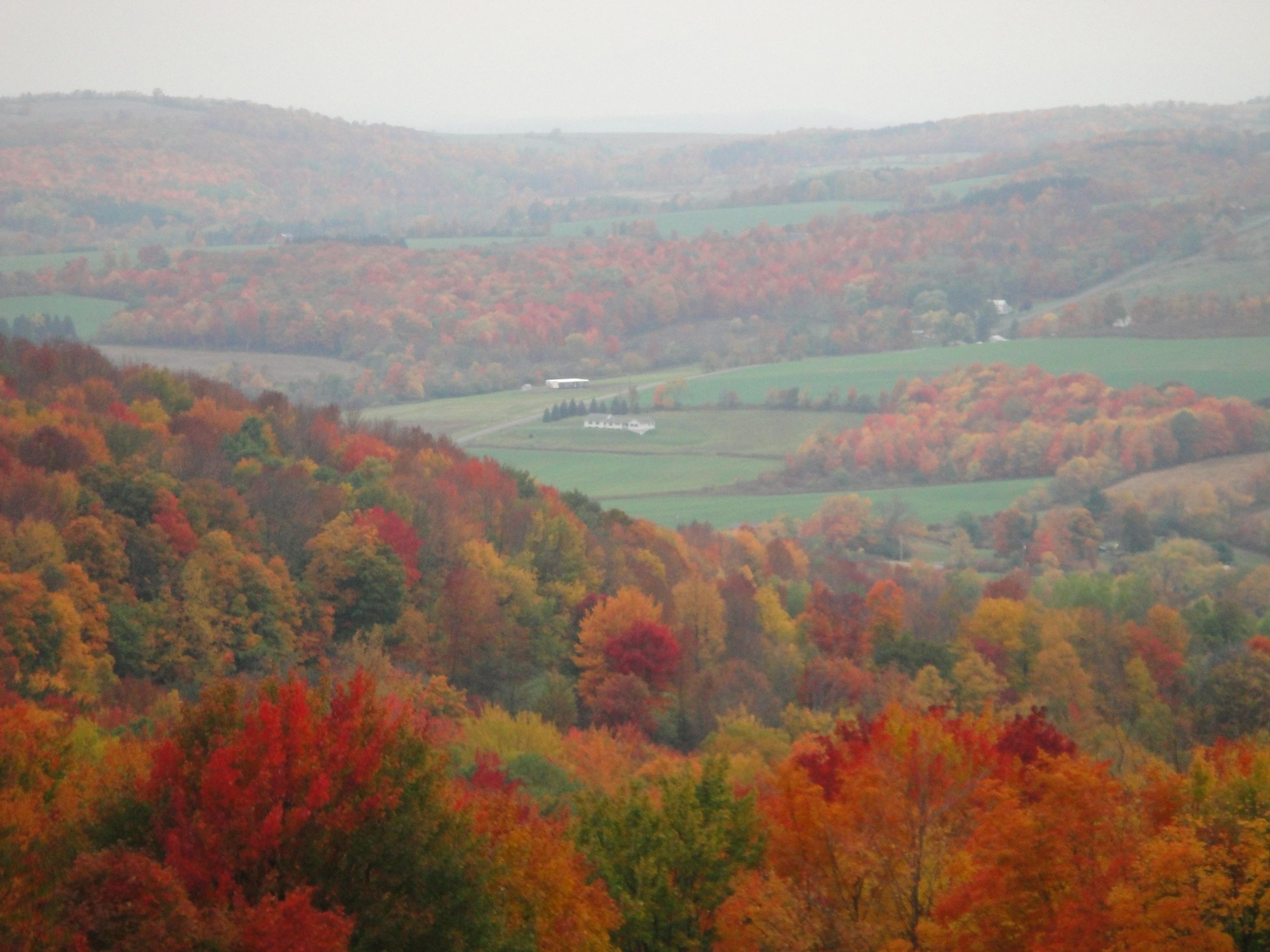Fall scene over looking Virgil Valley. Taken from Van Donsel Road. Photo credit Marsha Powell