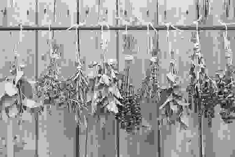 image of various herb hanging upside down to dry