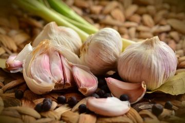 Organic Fresh Jersey Garlic