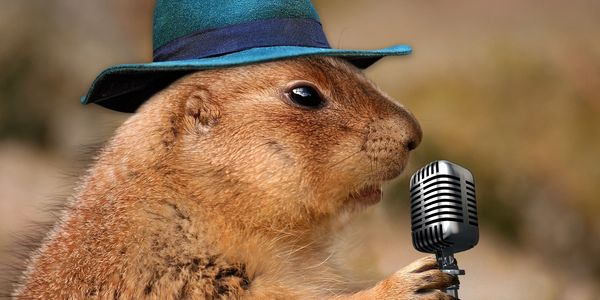 a groundhog wearing a blue fedora talking into a microphone.