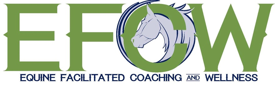 Equine Facilitated Coaching and Wellness