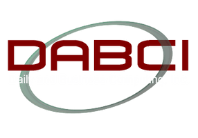 Daily and Business Computing Inc