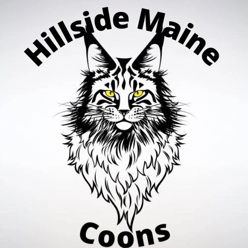 Hillside-Maine Coons