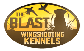 The Blast Wingshooting Kennels