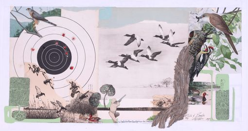 """Birds & Beasts""    found papers, found vintage engravings , drawing, found target, wasp nest paper"