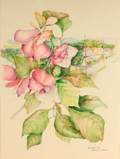 "A drawing of 'Magnolias "" in the village. Colored pencil on rag paper"
