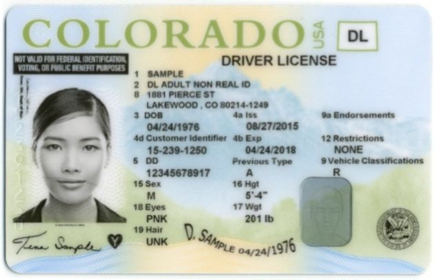 Undocumented Immigrants driver's License