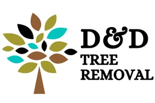 D&D Tree Removal