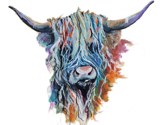colourful Highland cow, Highland Coo, watercolour, Scotland, cairngorms, Cairngorm National Park
