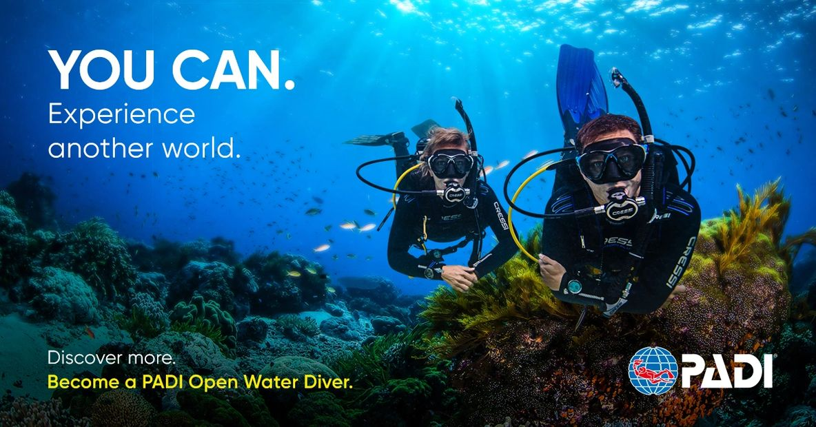 YOU CAN. Experience another world. Discover more. Become a PADI Open Water Diver.