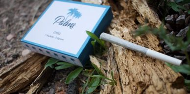 Beyond The Bud Cannabis Photography by Enja Eriksen (Joint on fallen tree in nature) Palms Brand