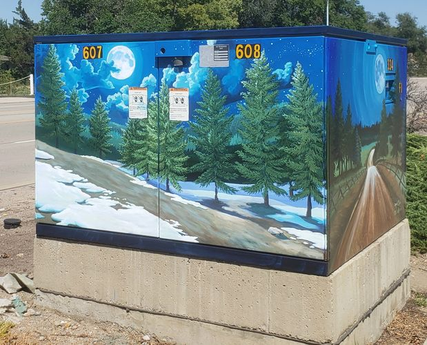Shock Art 2019 Acrylic exterior mural Longmont Colorado Painted mural on metal electrical switch box