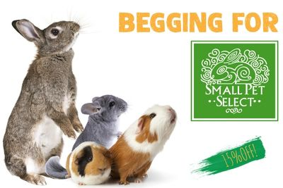 Small Pet Select 15% off coupon!