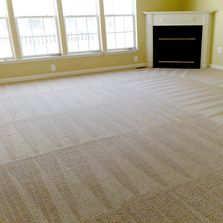 Dry Green Carpet Cleaners Carpet Cleaning Tile And