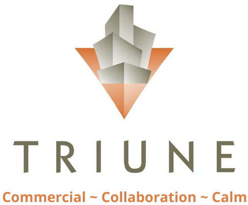 Triune Services Group, Inc