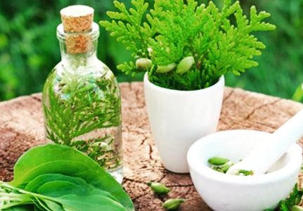 Herbs Individualized  Chinese Medicine Treatment Healing