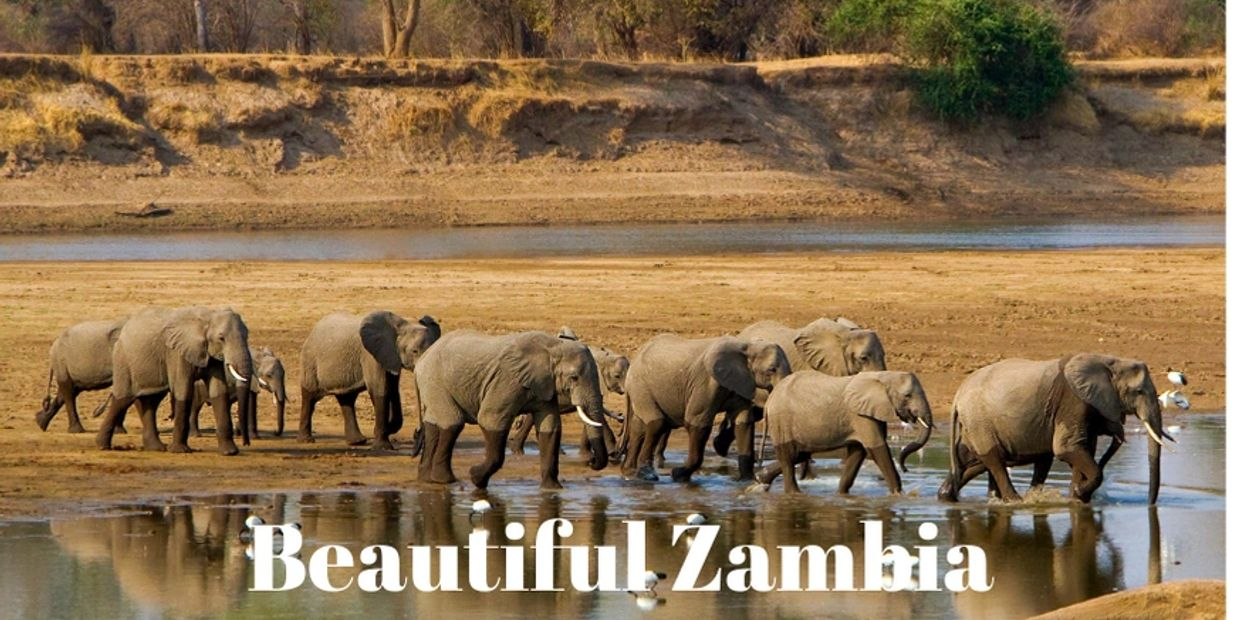 Zambia Small Group Tours, Solo Travel, Zambia Safaris