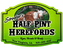 Streeter's half- pint  herefords