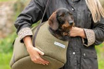 Wag & Bone Mutts & Hounds Carrier