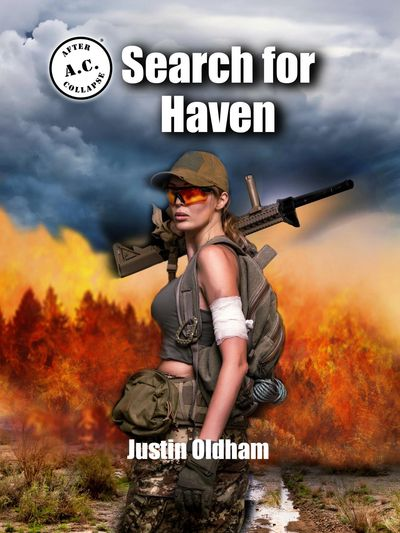 Search for Haven cover