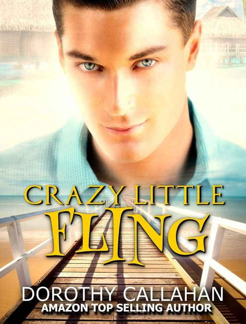Crazy Little Fling Dorothy Callahan contemporary action adventure vacation military veterinarian