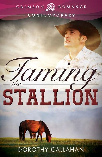 Taming the Stallion Dorothy Callahan cowboy police horse millionaire