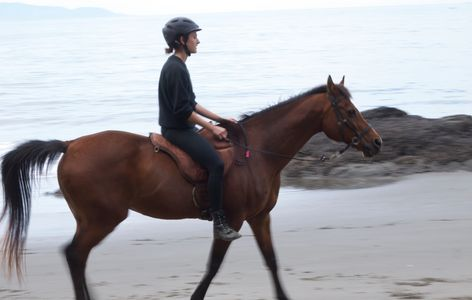 Alison enjoys the beach with her horse