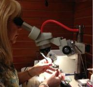 Lisa, fixing a broken hearing aid in her On-Site hearing aid cleaning,  maintenance & repair shop