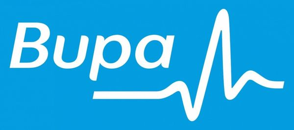 PARTNER OVERSEAS STUDENT HEALTH COVER PROVIDERS IN AUSTRALIA. Bupa