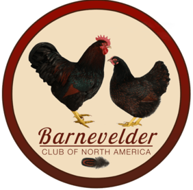 Barnevelder Club of North America