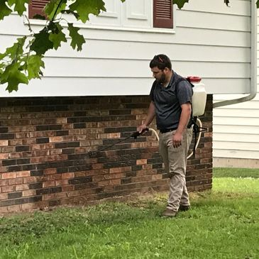 A demonstration of our pest control services in Salem, IL