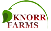 Knorr Farms
