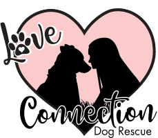 Love Connection Dog Rescue